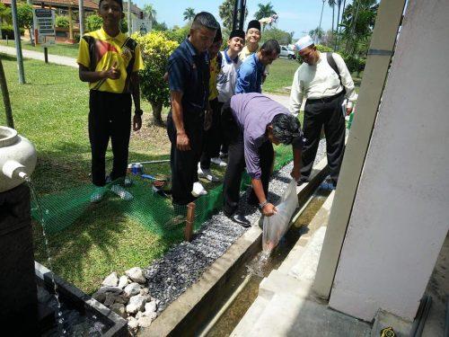 Ikan Koi Hidup Di Dalam Longkang: Projek Sekolah Ini Berjaya Mewujudkan Budaya Masyarakat Jepun Di Malaysia!