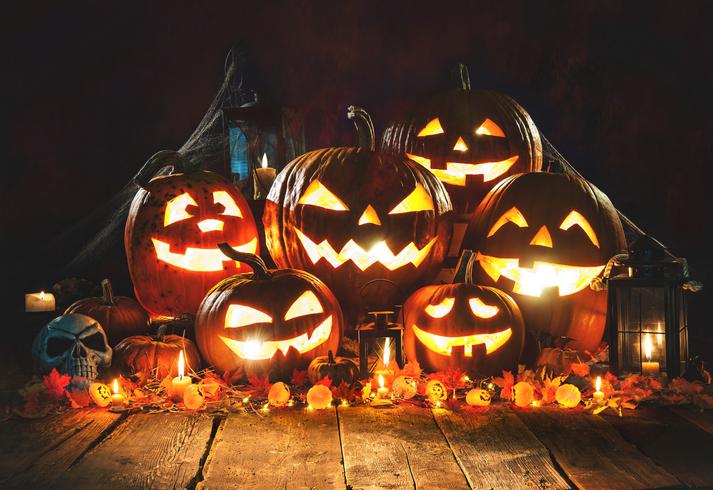 Halloween: Trick Or Treat! (Part 2)